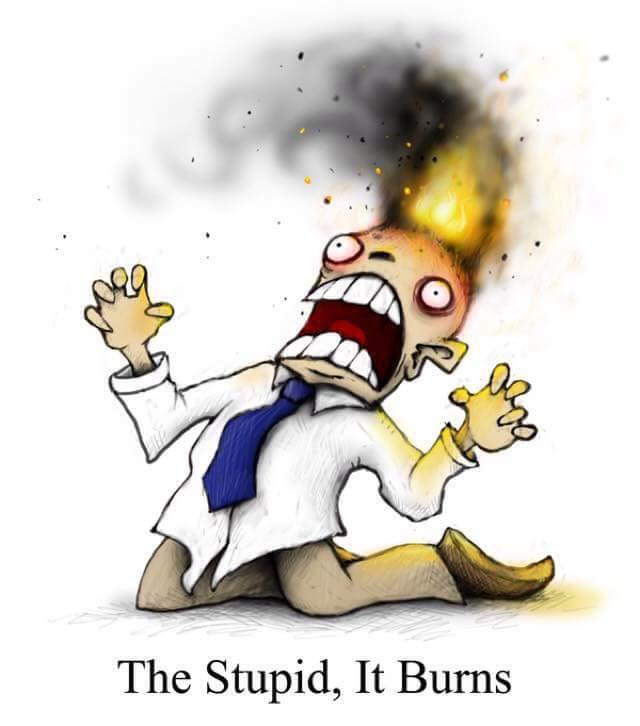 StupidBurns